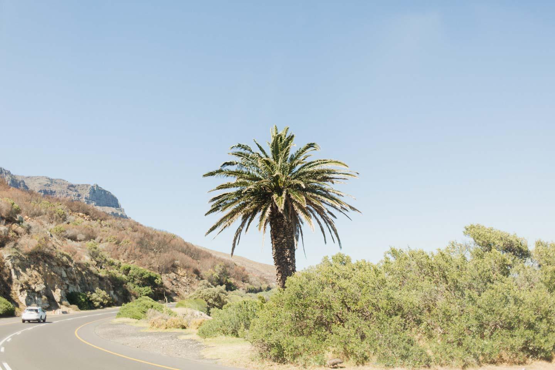 Vanessa_Esau_SouthAfrica_Capetown_Kapstadt_Travel (7)